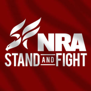 nra-stand-and-fight-msnbc_0